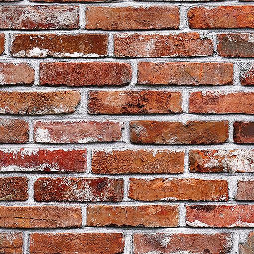 White and Red Brick | Wallpaper Gurgaon